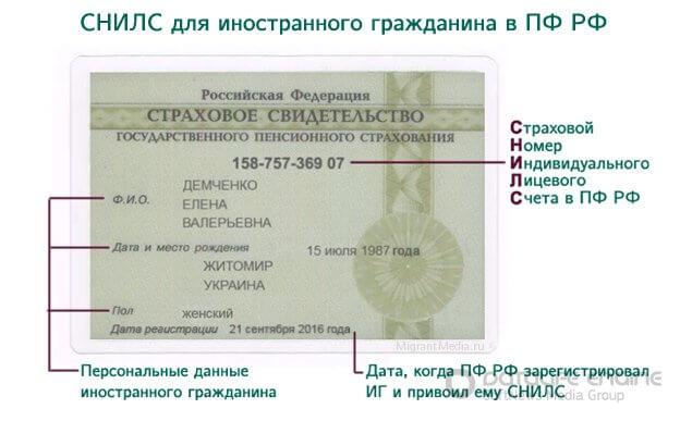 Заявление о признании носителем русского языка консультант плюс